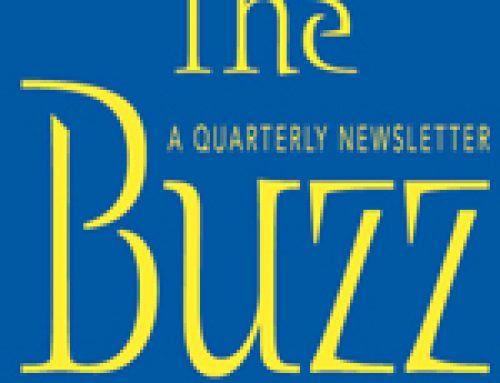 The Buzz – Summer 2016. The BID's Quarterly Newsletter